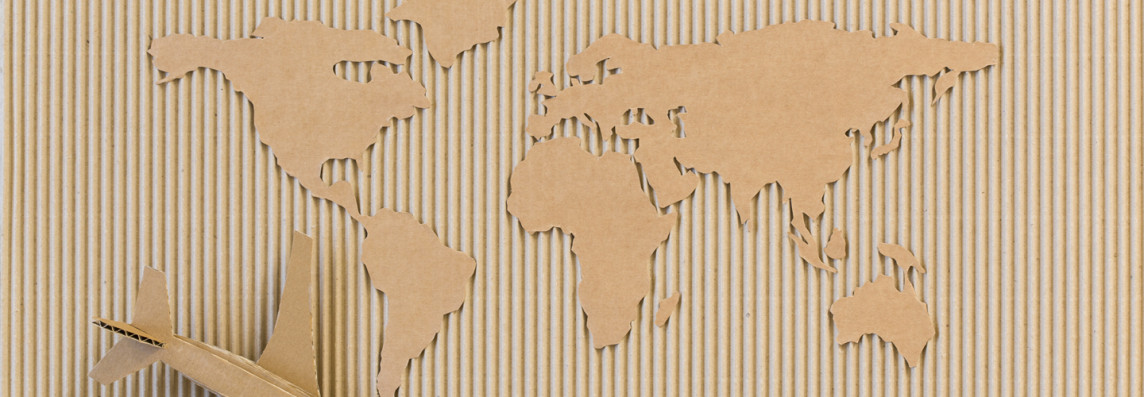 Cardboard Map of the World